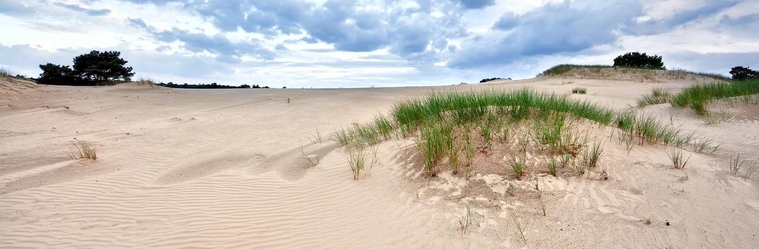 Friesland, Holandsko