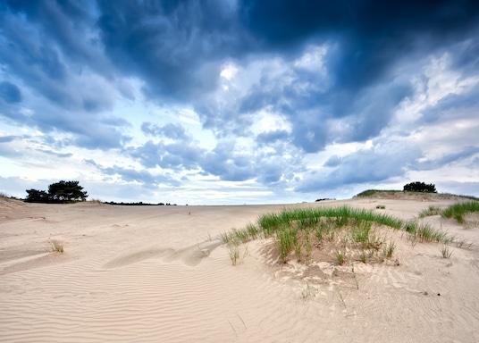 Friesland, Alankomaat