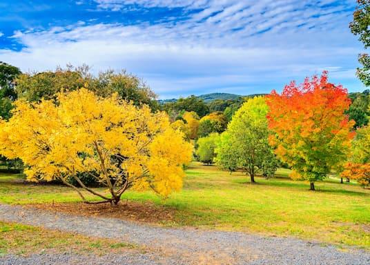 Australia Selatan, Australia
