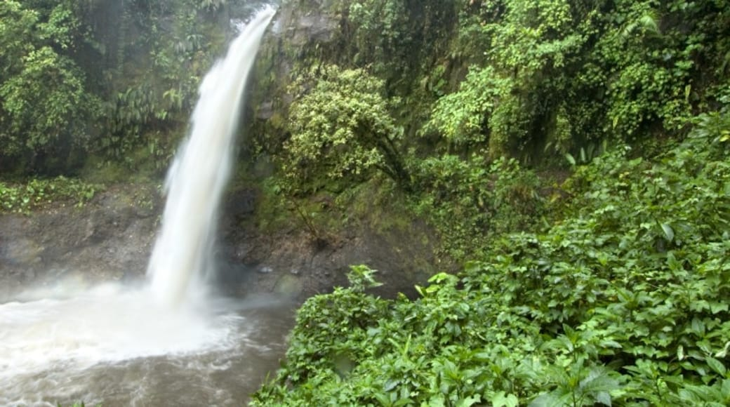 Parc national Braulio Carrillo