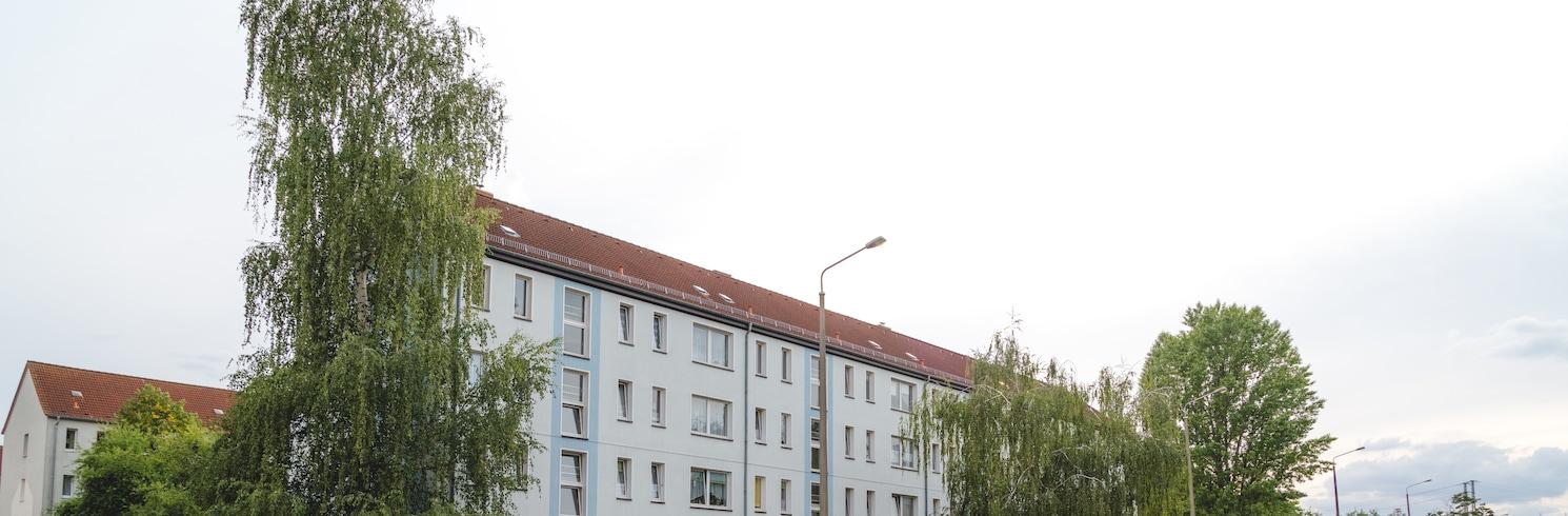 Seehausen, Almanya