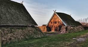Музей Bork Vikingehavn