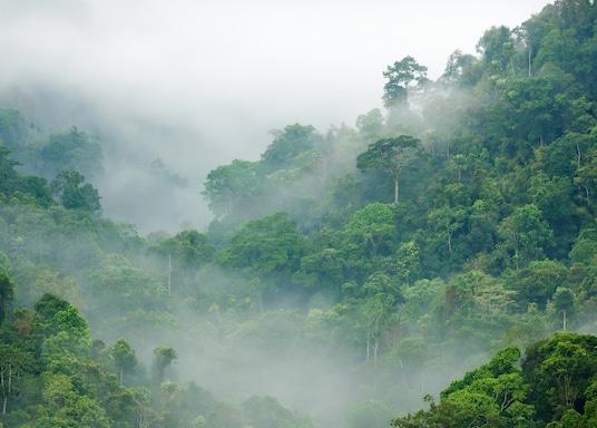 崗卡章國家公園, 泰國