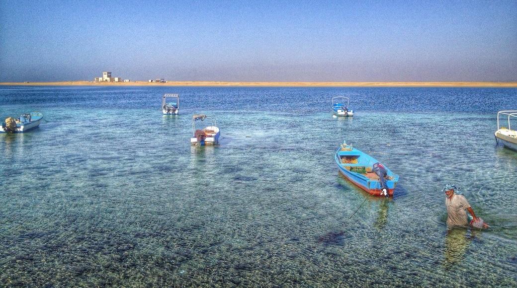 Al Madinahin provinssi