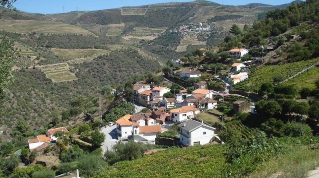 Vila Real District
