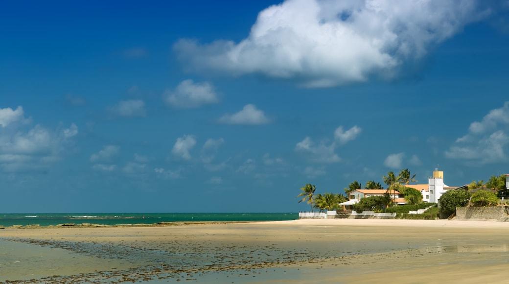 Maracaju
