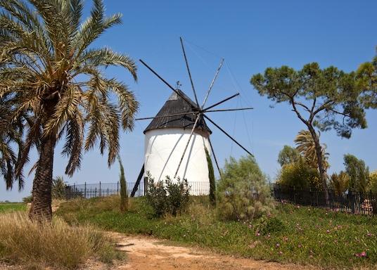 Торре-Пачеко, Испания
