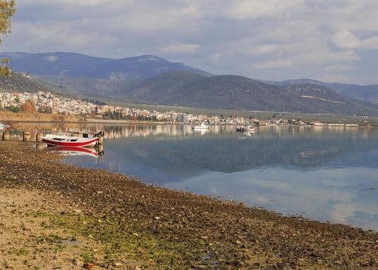 Fthiotida (vùng), Hy Lạp