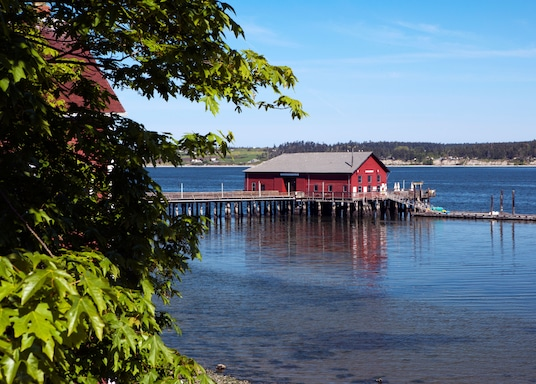 Острів Відбі, Вашингтон, Сполучені Штати Америки