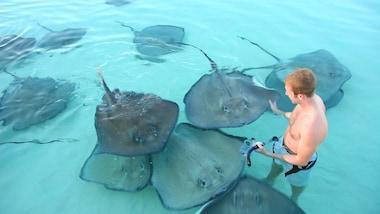 Grand Cayman Beaches