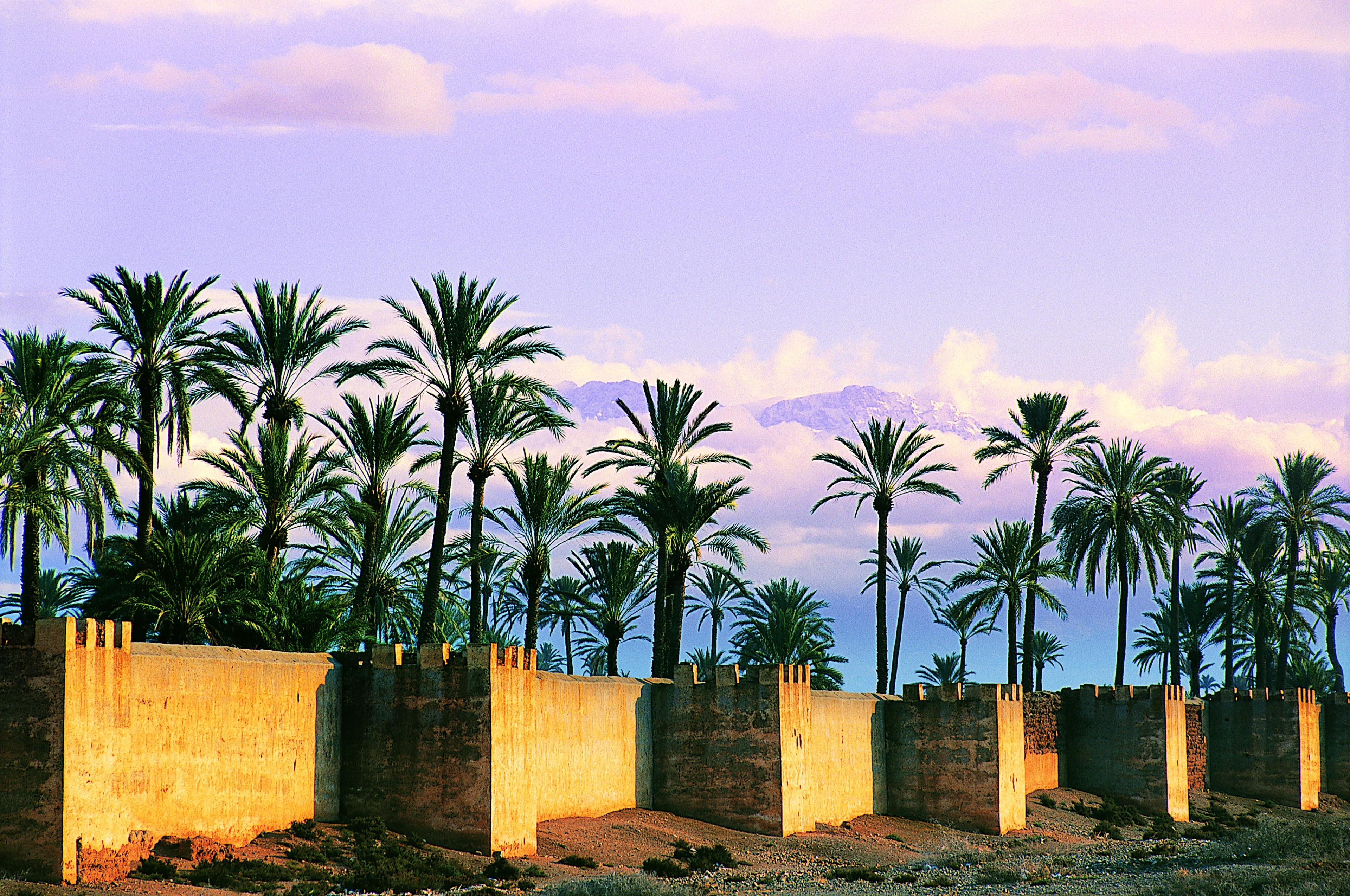 Annakhil, Marrakech, Marrakech-Safi, Morocco