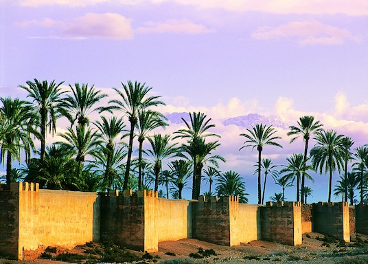 Anachilis, Marokas