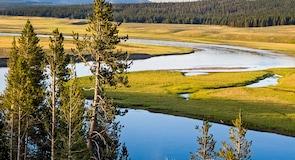 Yellowstone-tó