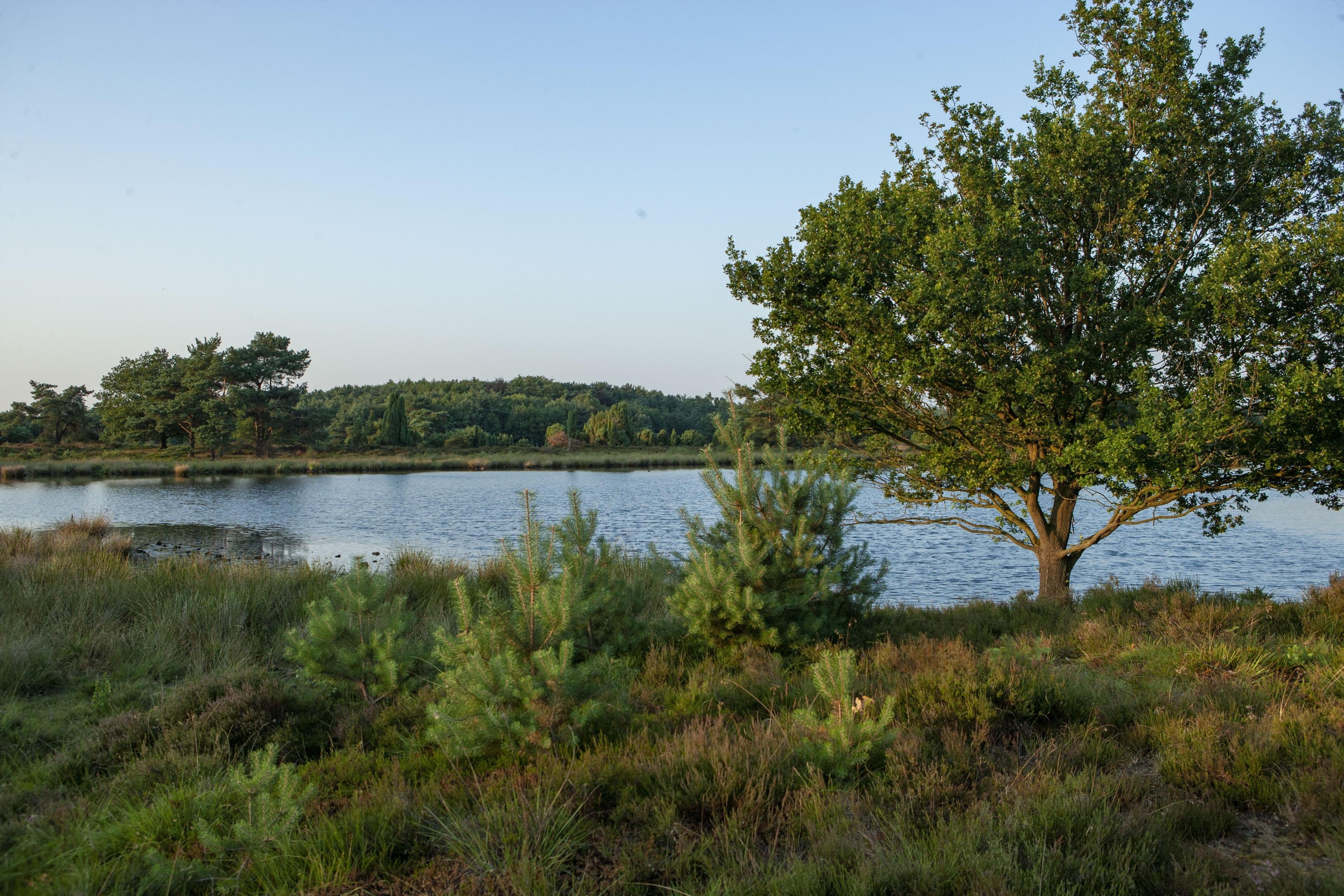 Municipality of Midden-Drenthe, Drenthe, Netherlands