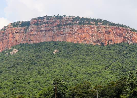 Tirupati, הודו