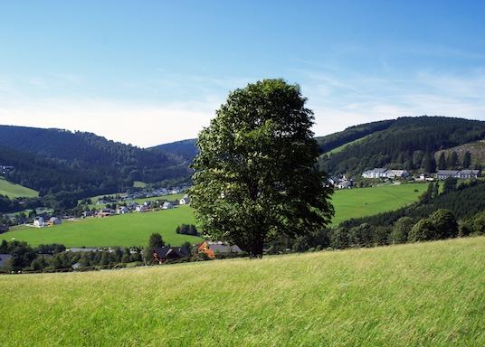 Willingen (Upland), Deutschland