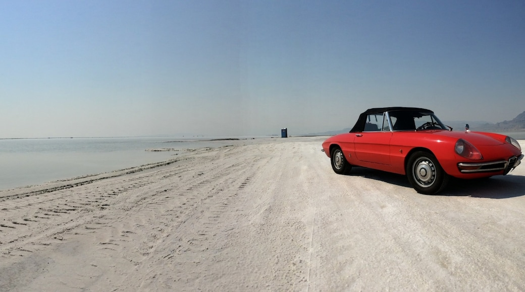 Bonneville Salt Flats State Park