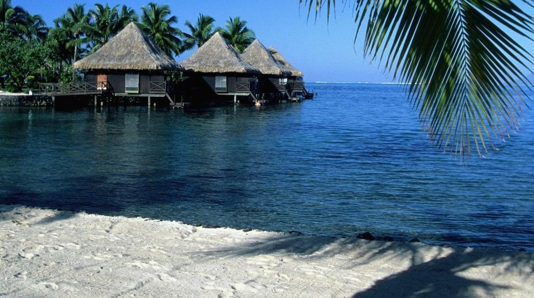Île de Taha'a
