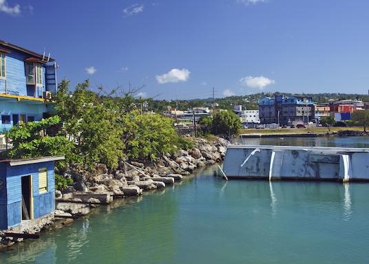 פלמות', ג'מייקה
