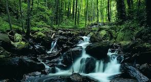 Státní park Amicalola Falls