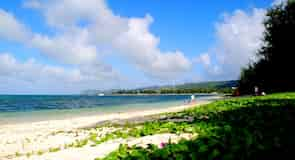 חוף מיקרו
