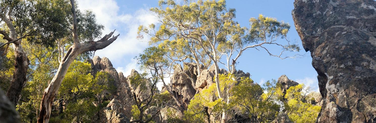白马市, 维多利亚州, 澳大利亚