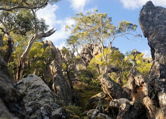 Melburnas, Viktorija, Australija