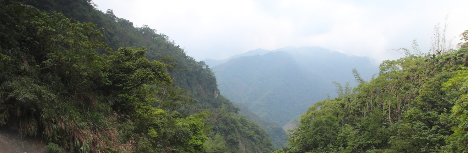 Cổ Khanh, Đài Loan