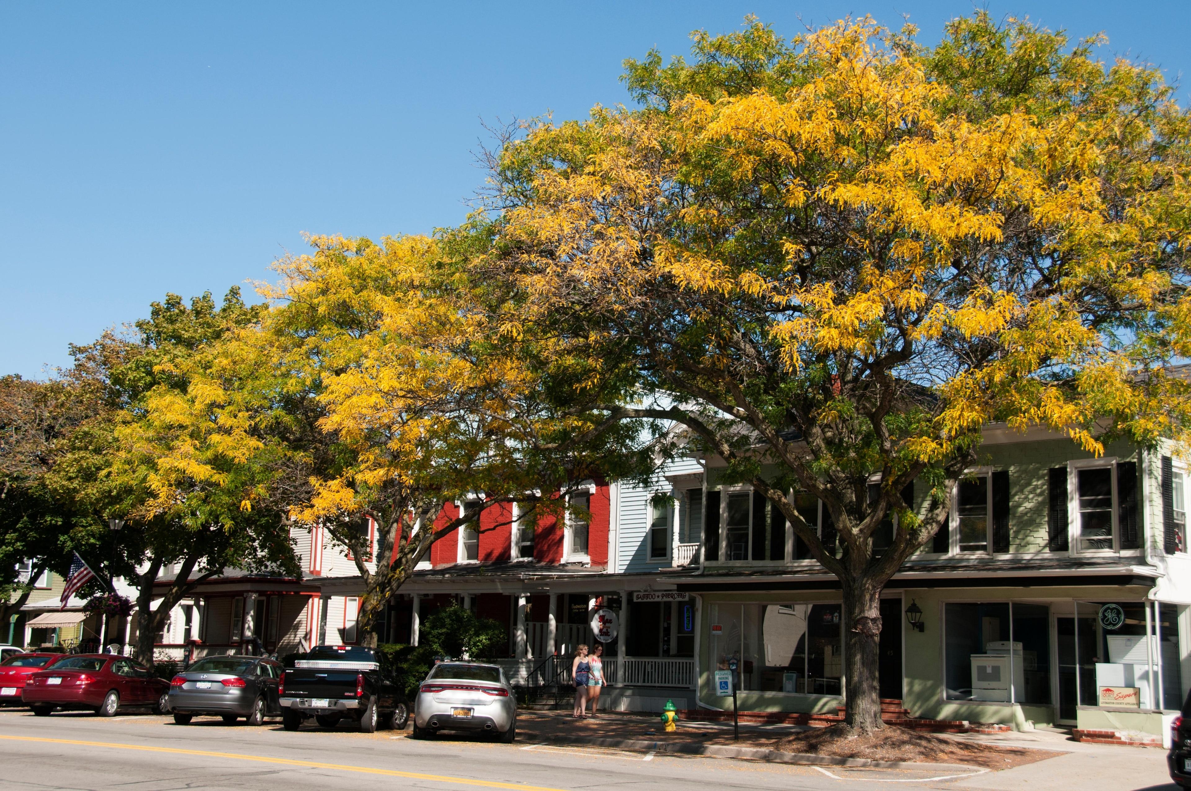 Comté de Livingston, New York, États-Unis d'Amérique