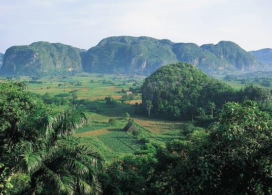 維尼亞萊斯, 古巴