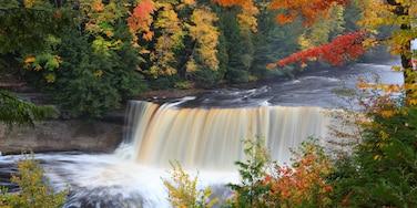 Newberry, Michigan, United States of America
