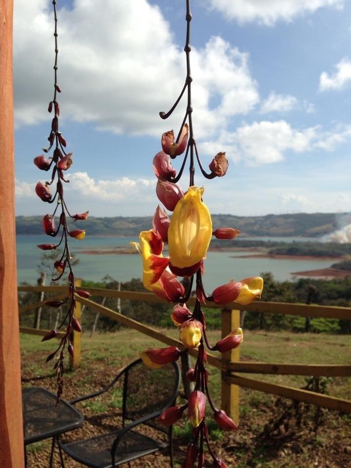 Lake Arenal, Guanacaste, Costa Rica