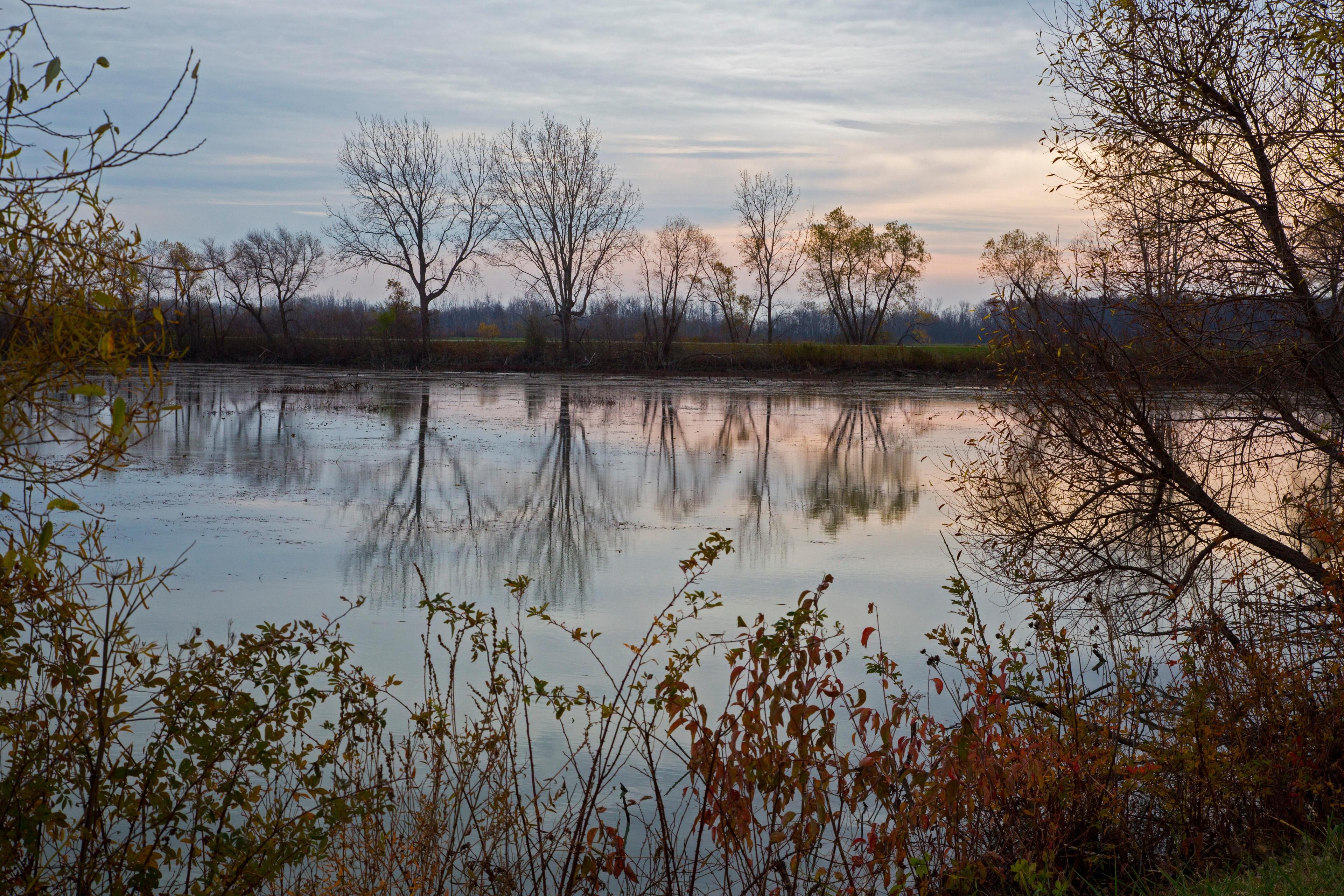 Oak Harbor, Ohio, United States of America