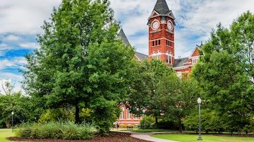 Auburn/