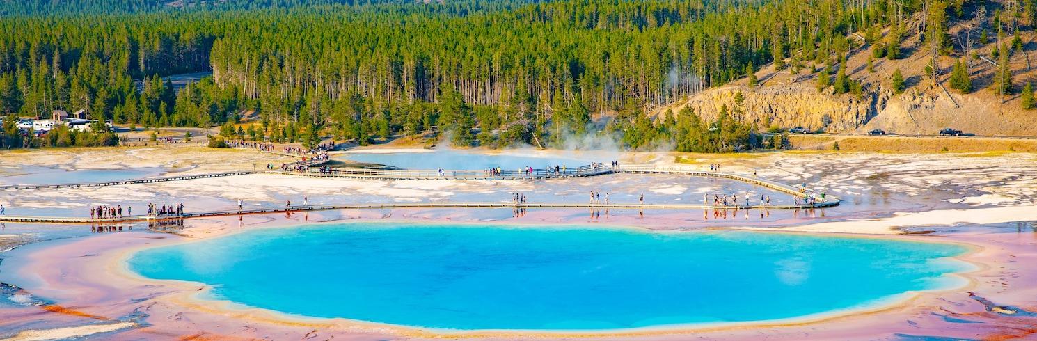 Yellowstone National Park, Wyoming, United States of America