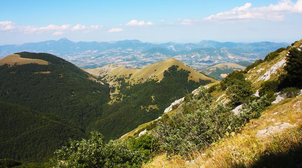 Grotte del monte Cucco