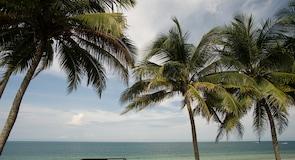 Pláž Desaru