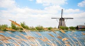 Réseau des moulins de Kinderdijk-Elshout