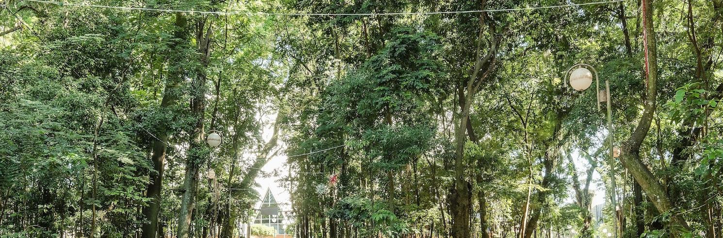 坎迪杜龍敦元帥城, 巴西