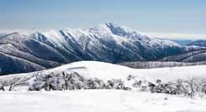 Mount Feathertop