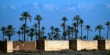Agdal, Marrakesch, Marrakesch-Safi, Marokko