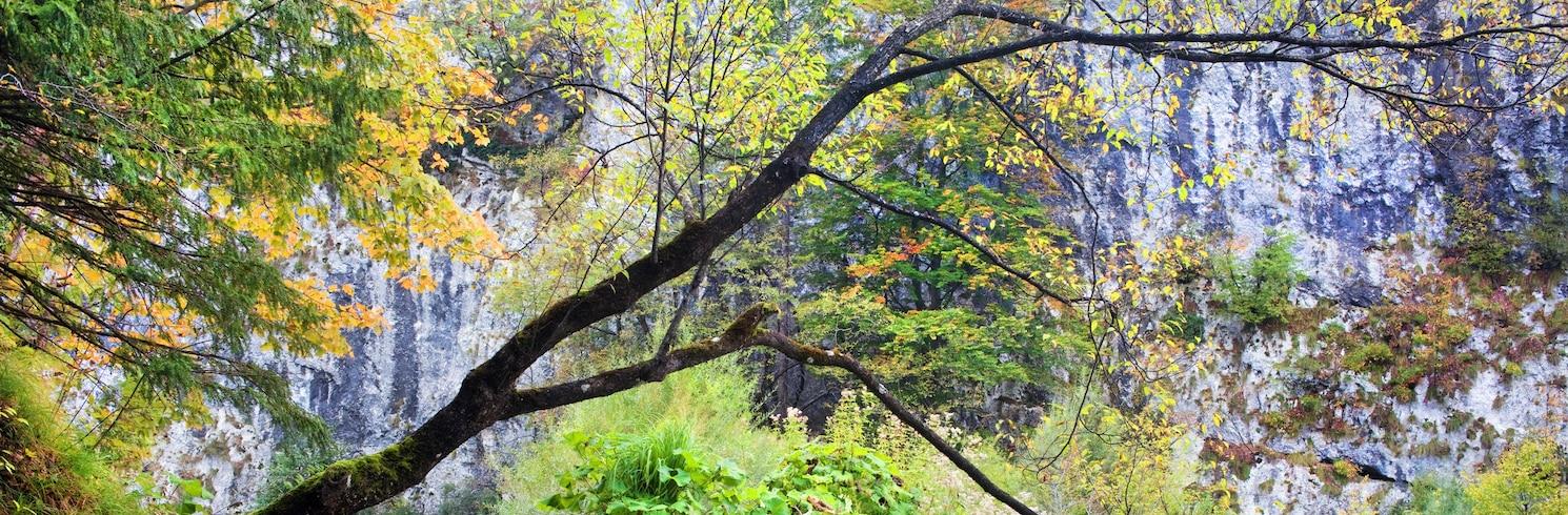 普利特維採湖群, 克羅地亞