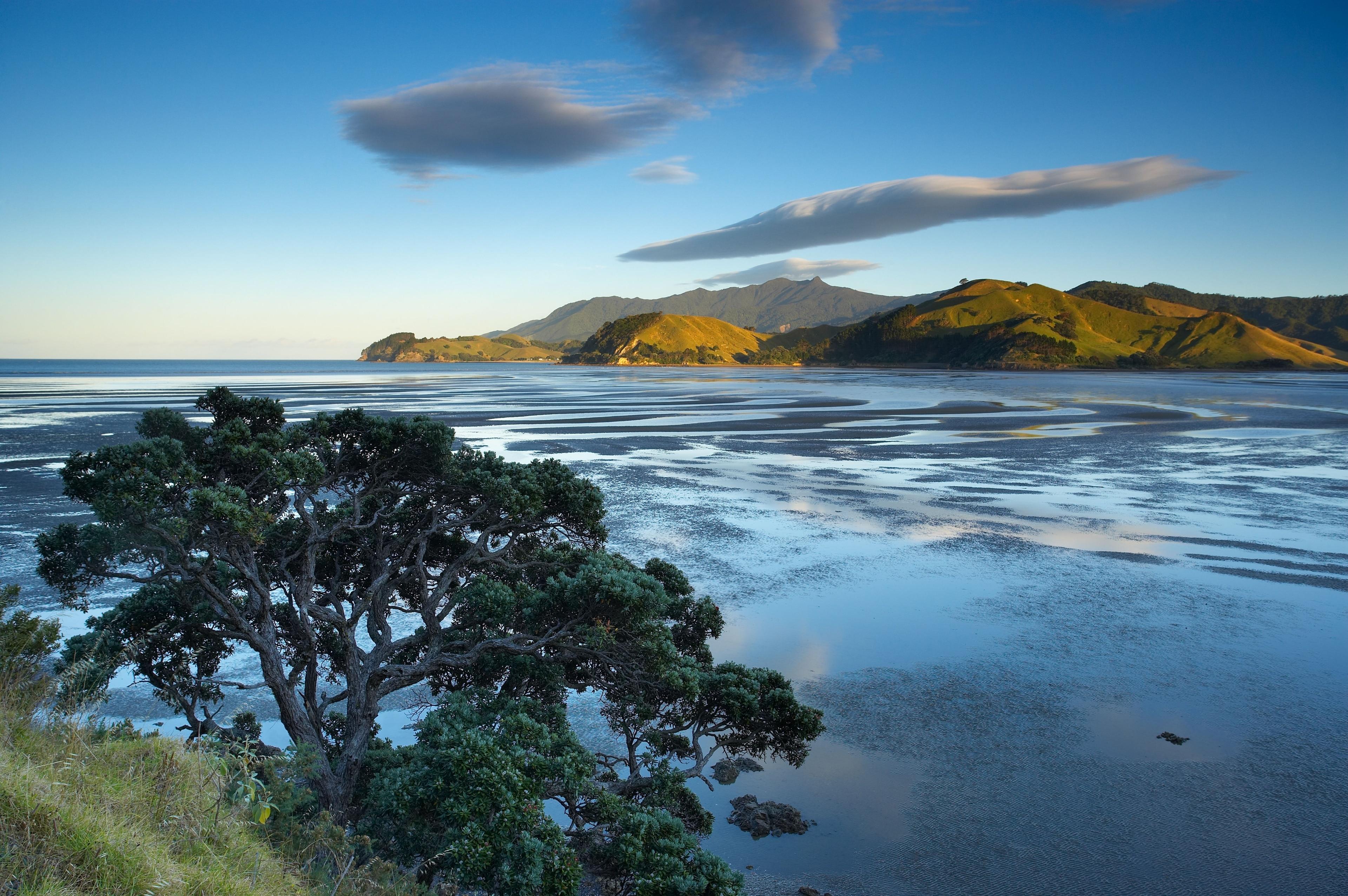Colville, Waikato