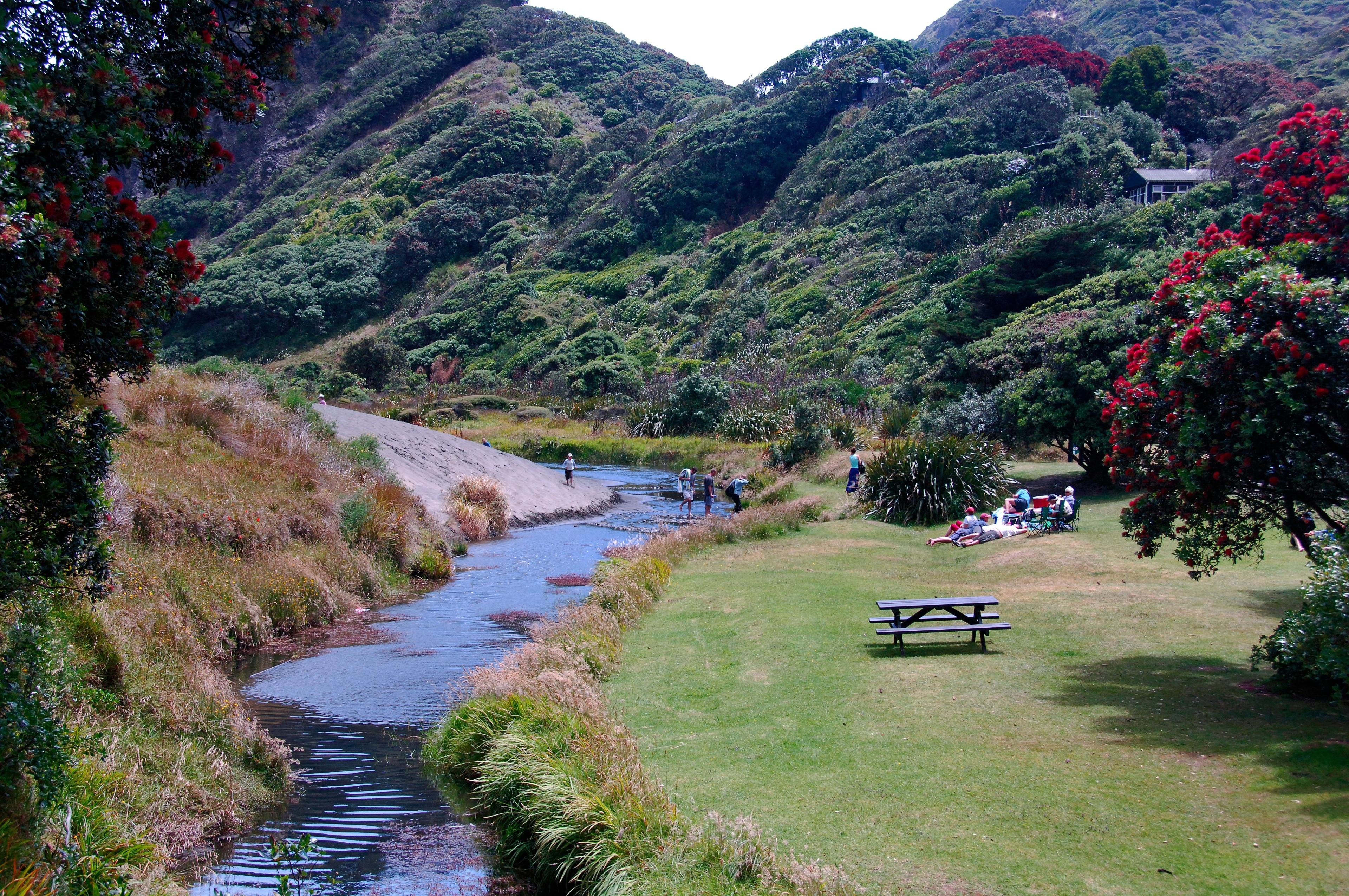 West Auckland, Auckland Region, Neuseeland