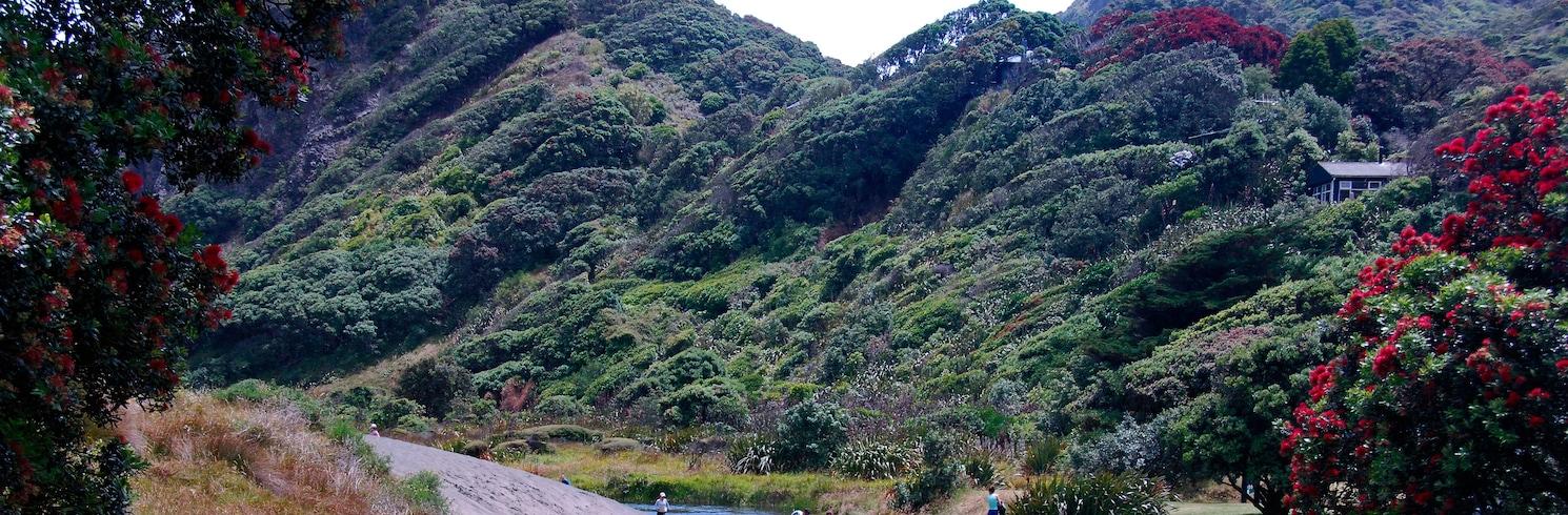 新林, 紐西蘭