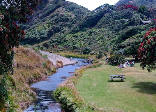 New Lynn, New Zealand