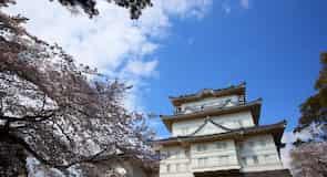 Kasteel van Odawara