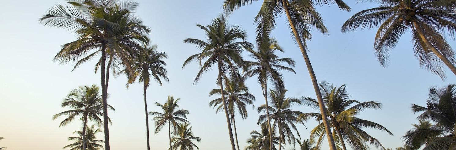 Vagator, Indie