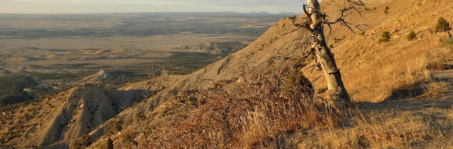 Grand Junction (e dintorni), Colorado, Stati Uniti d'America