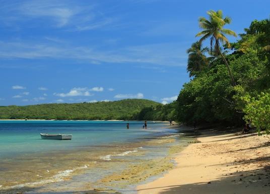 法哈多, 波多黎各